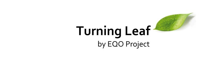 Turning Leaf – Project development